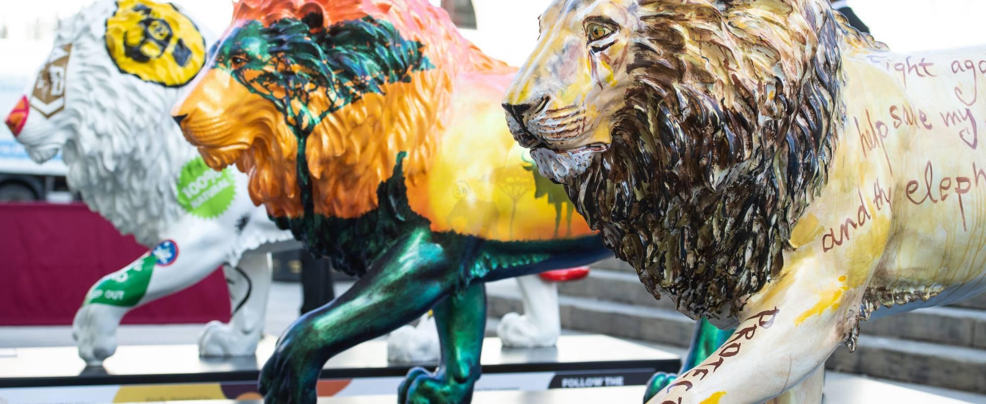 Tusk Lion Trail 2 Jeff Spicer Getty